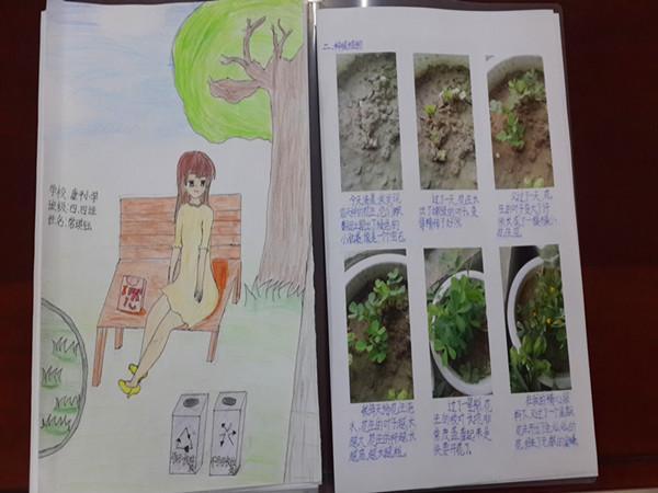 植物成长日记