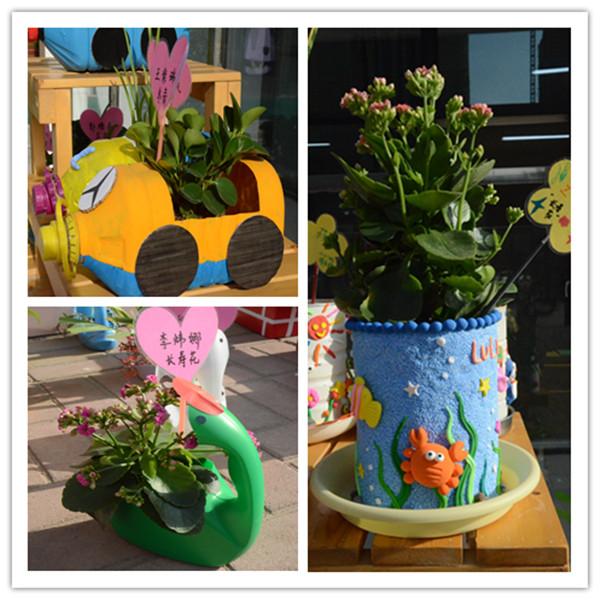 油桶diy花盆图片