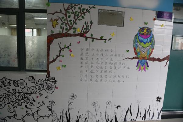 美丽的班级文化墙
