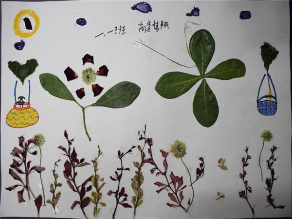 """开展了以""""春天""""为主题的树叶粘贴画创作实践活动."""